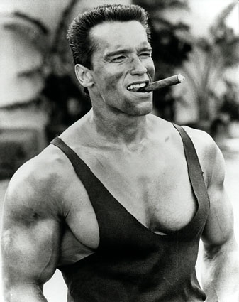 Picture of Arnold Schwarzenegger #99003