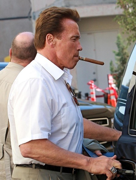 Picture of Arnold Schwarzenegger #99016