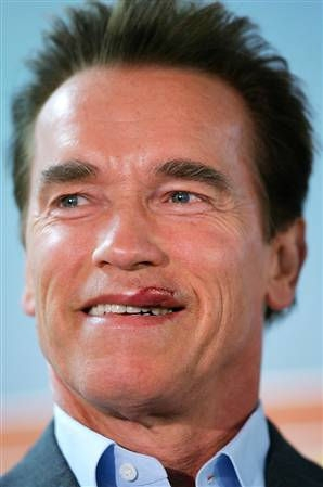 Picture of Arnold Schwarzenegger #98994