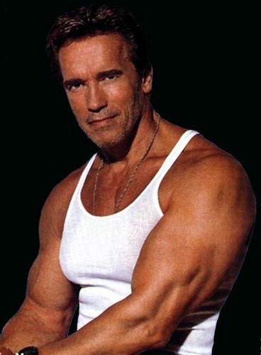 Picture of Arnold Schwarzenegger #99002