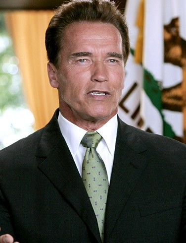 Picture of Arnold Schwarzenegger #99006