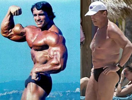Picture of Arnold Schwarzenegger #99013