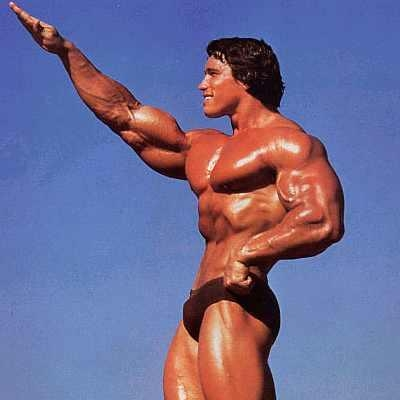 Picture of Arnold Schwarzenegger #99014