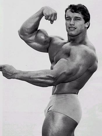 Picture of Arnold Schwarzenegger #99017